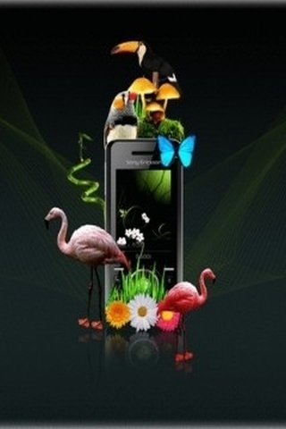Free-mobile-wallpaper-cell-phone-wallpapers-sony-ericsson-zoo